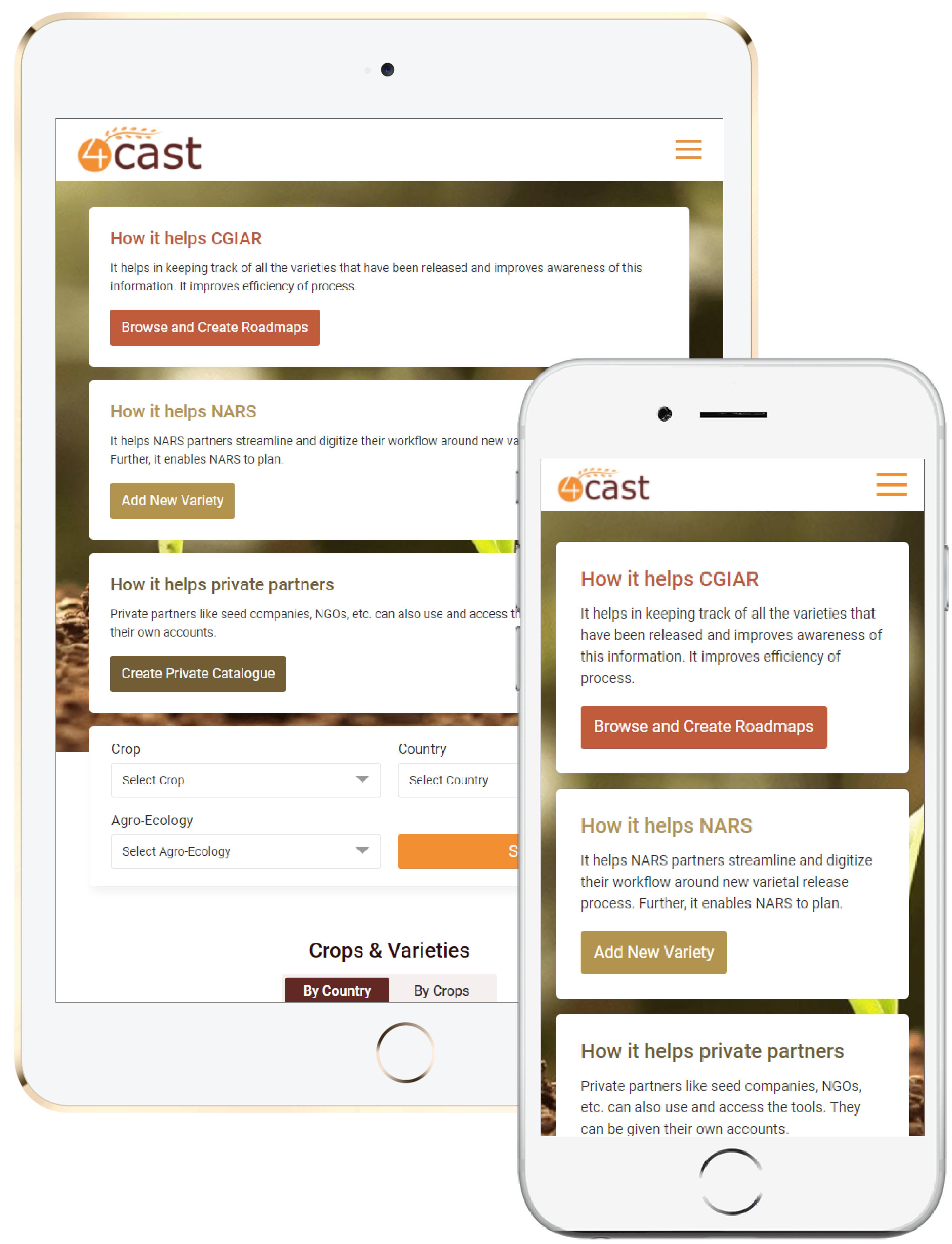 4cast Responsive Website Design